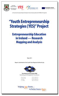 The report on entrepreneurship education mapping in Ireland